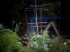 pop-garden-website-photos-_-jerry-mcclure-1802