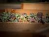 pop-garden-website-photos-_-jerry-mcclure-1845