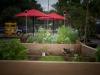 pop-garden-website-photos-_-jerry-mcclure-1878