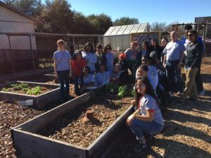 Bayles P.O.P. Garden, MLK Day of service