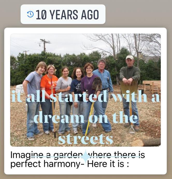 10 years, 12 gardens