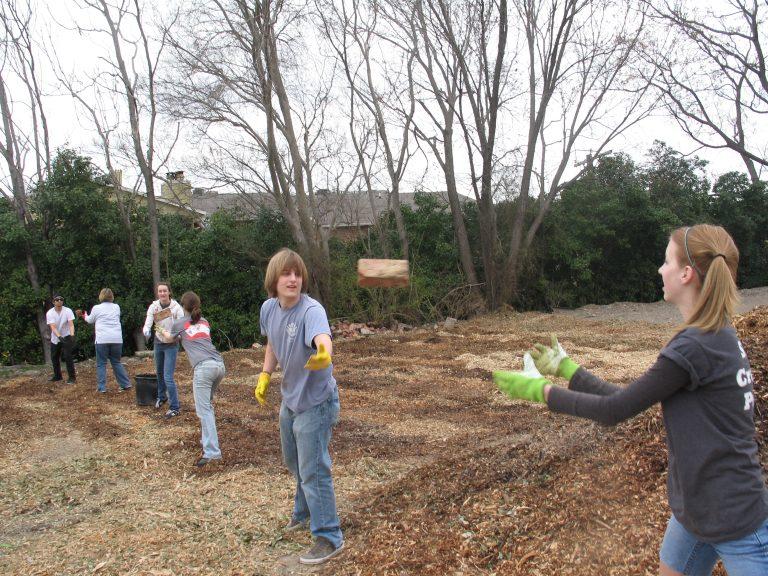 first pop garden