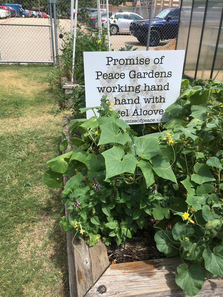 vogel alcove garden
